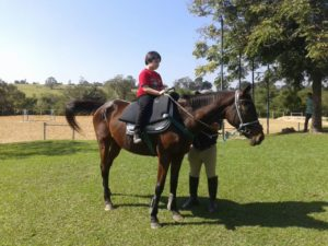 Primeiro Evento Teapoio com Instituto Horsoul de Equitação Terapêutica Sistêmica